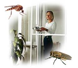 professioneller einbau von insektenschutzgittern und elektrosmog schutz gittern f r fenster und. Black Bedroom Furniture Sets. Home Design Ideas